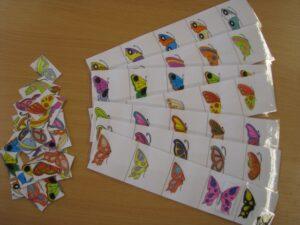 Fele-más 1. - Pillangók - fejlesztő eszköz